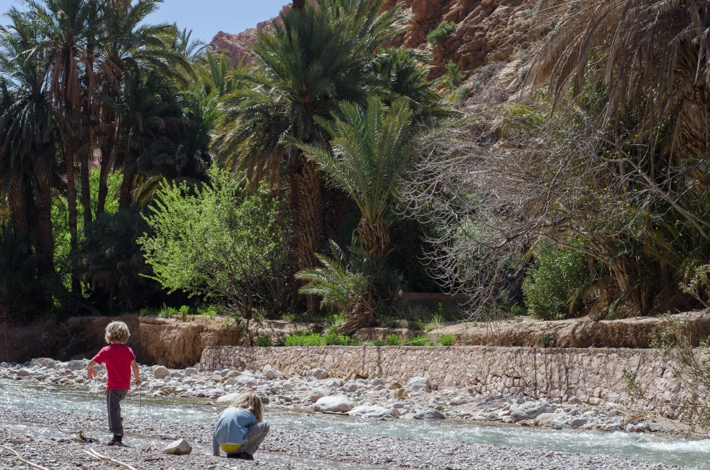 The walk through the palmeries to Todra Gorge itself, was arguably the highlight of our visit. The gorge is impressive but it's cool and fagrant and lush beneath the palms, beside the river