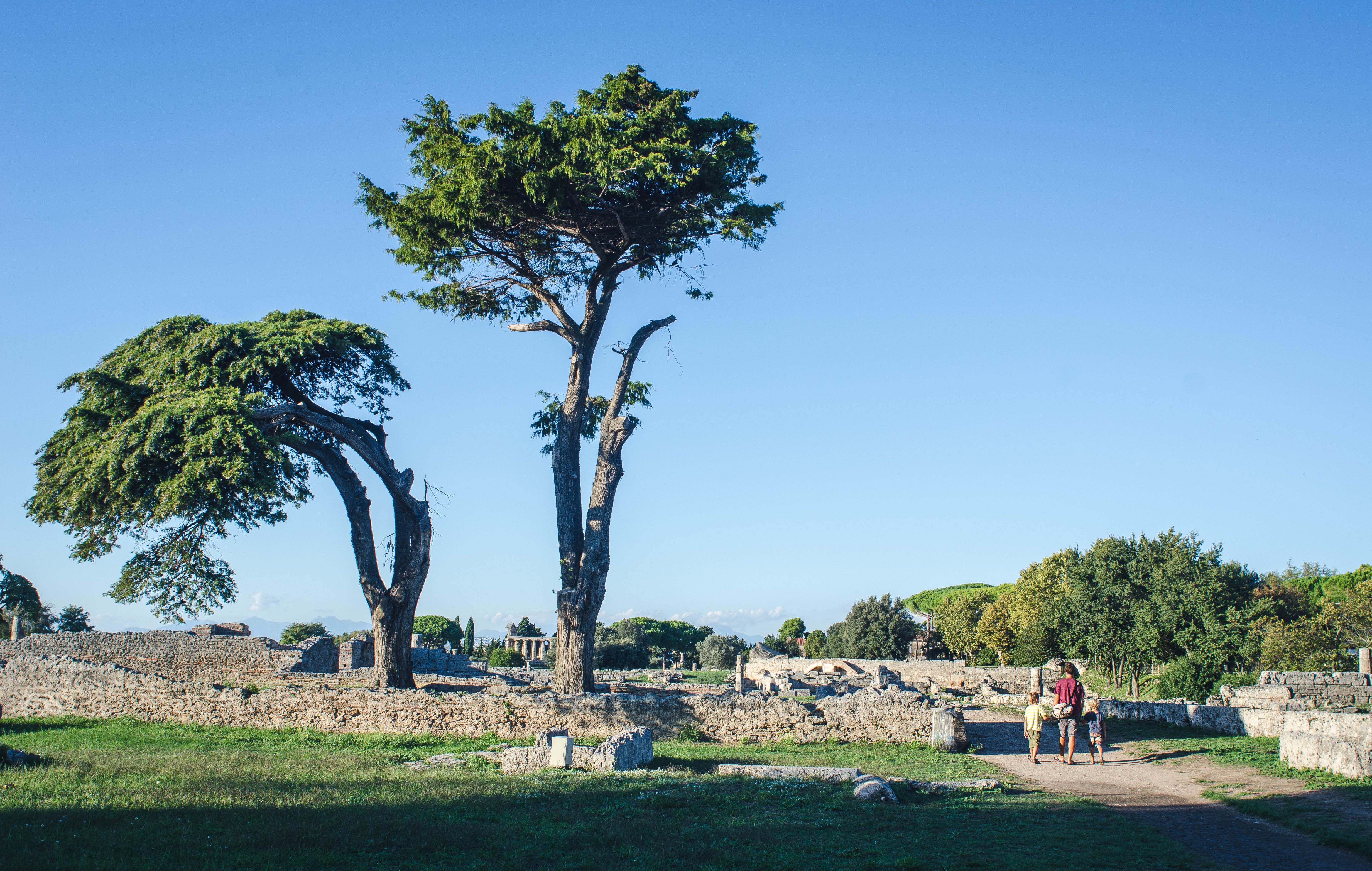 paestum and the temple of hera the mucky root
